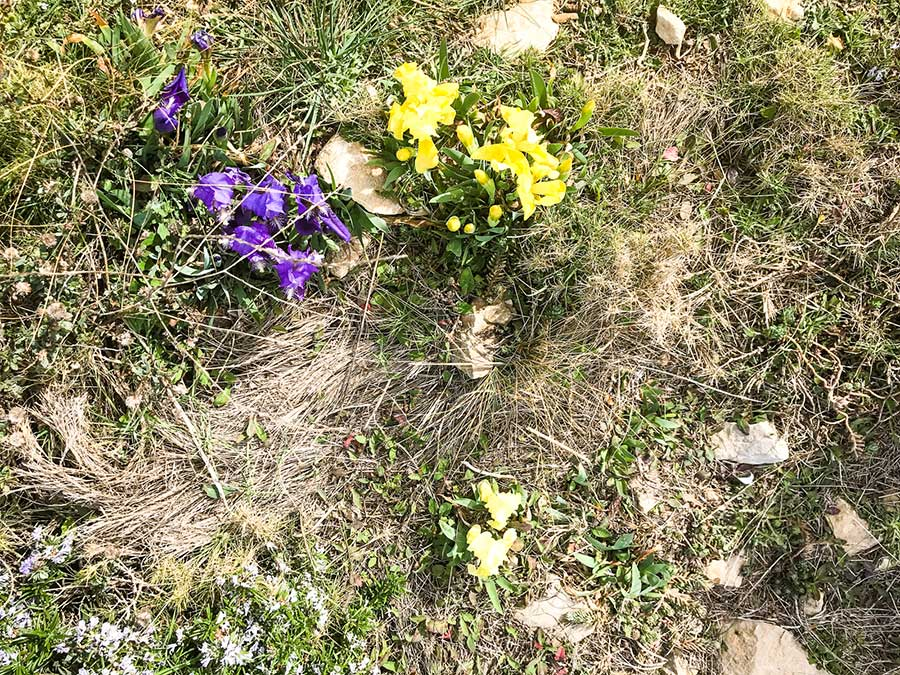 escala-cami-de-ronda-port-fleurs