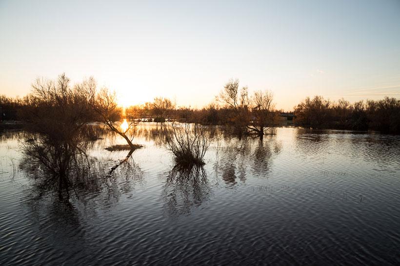 L'hiver à st pere pescador - Photo Didier Laget